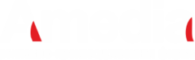 cropped-logo-amedia.png